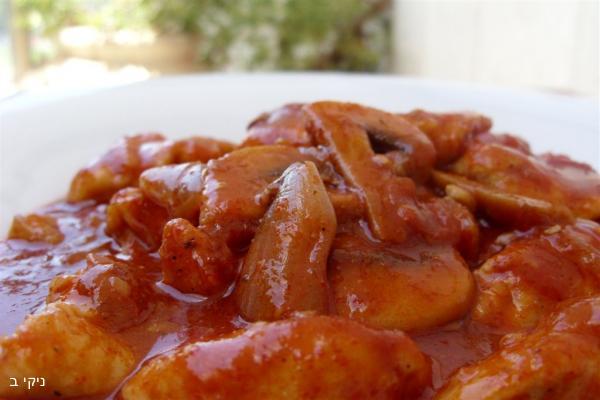 חזה עוף ברוטב עגבניות ופטריות / צילום : ניקי ב