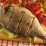 דג דניס מטוגן