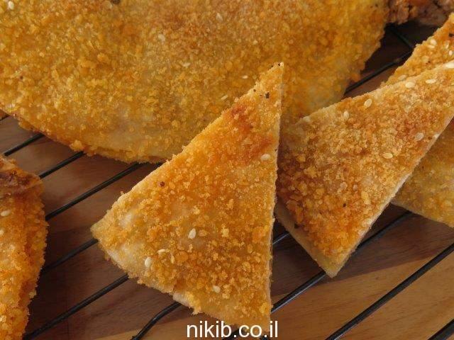 טורטייה פיצה עם בשר