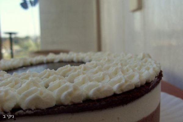 עוגת שכבות מרשימה לפסח